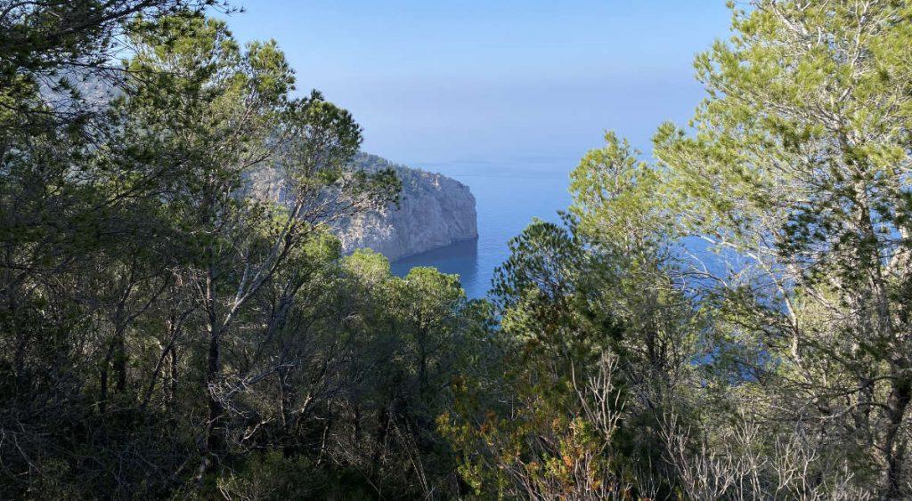 Het eiland Ibiza verkennen tijdens de weekenden.